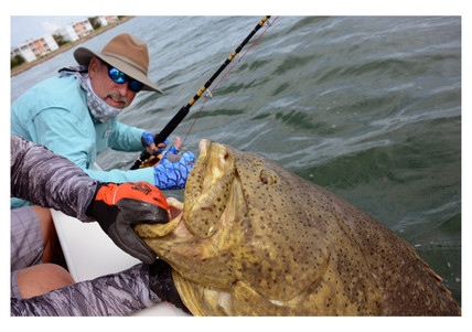 Ken Perrotte and Goliath Grouper - estimated more than 300 pounds