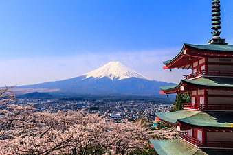 japan-view-on-mount-fuji-cherry-blossom.