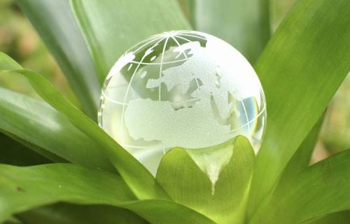 Glass Earth in leaf