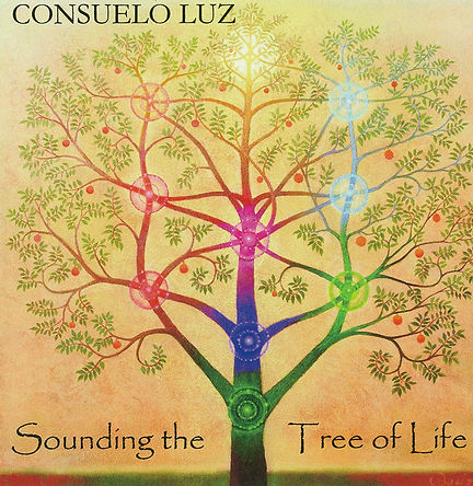 A meditative journey through the chakras or their equivalent – the ten Sefirot of the Kabbalistic Tree of Life.  Let the trancelike sounds of keyboard, cello and throat chanting take you from the Root to the Crown for a deep 30-minute chakra-balancing