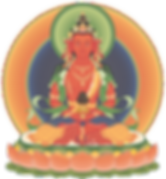 Amitayus 2_transparent.png