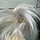 Thumbnail: Silver synthetic spiky small hairpiece Scrunchie be