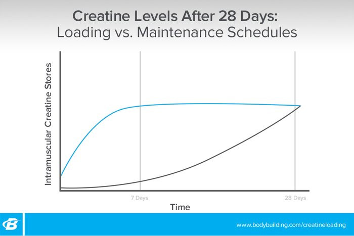 Chart of creatine's effect