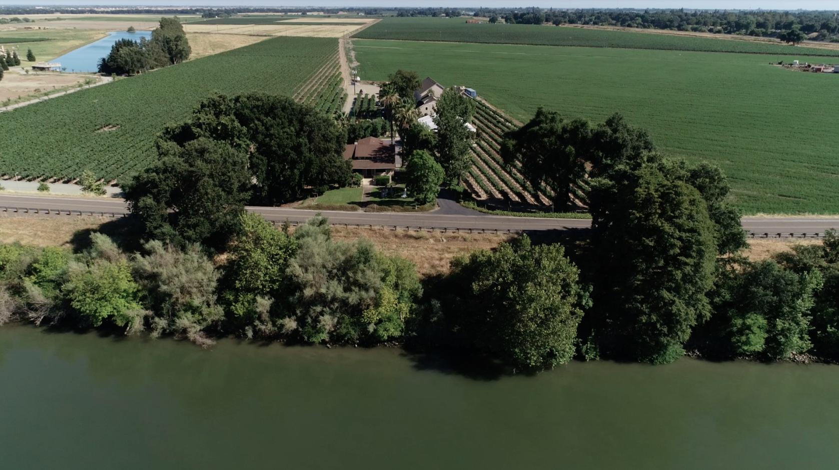 Drone Photo of Scribner Vineyard