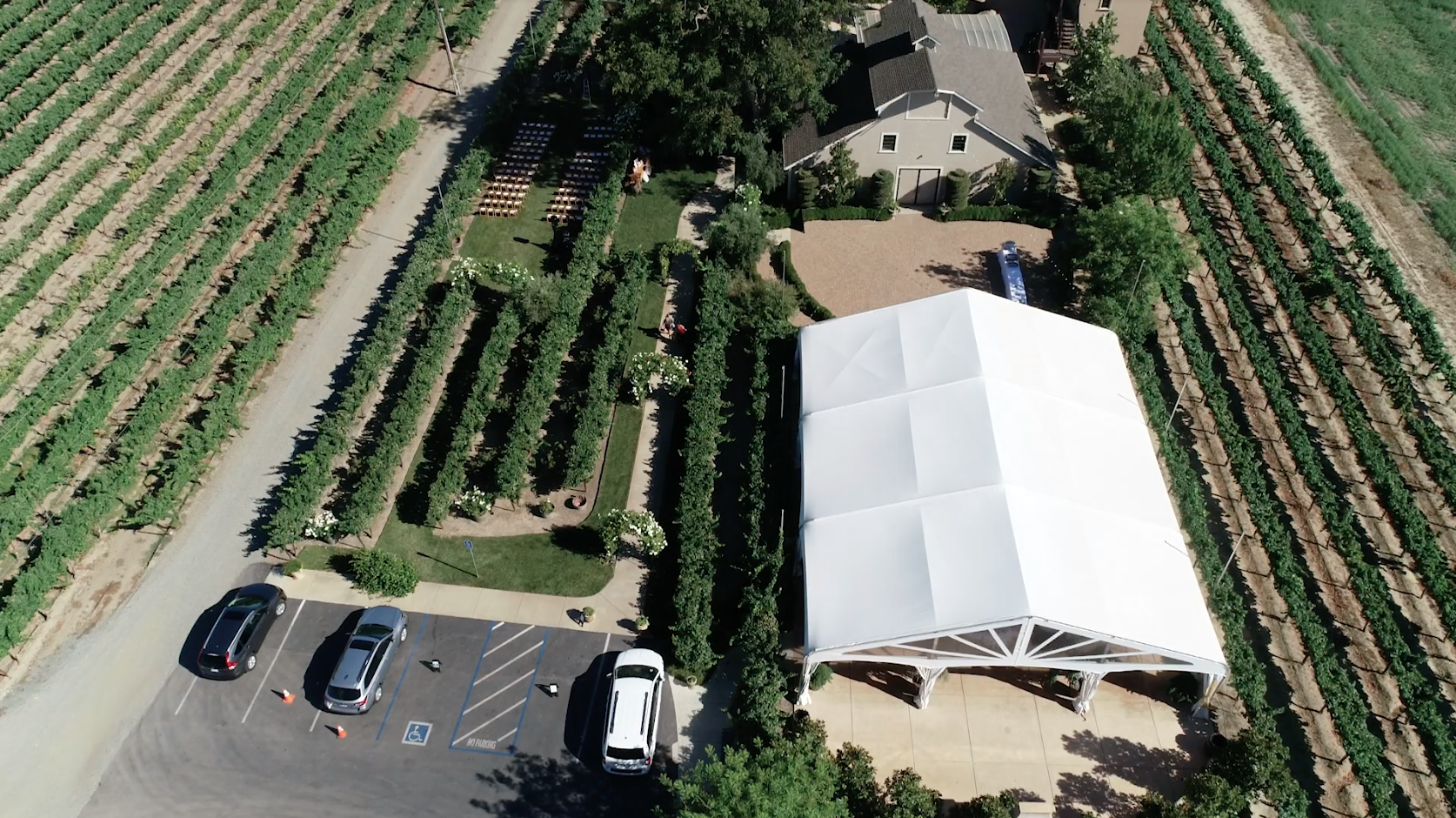 Drone view of Scribner Vineyard, CA
