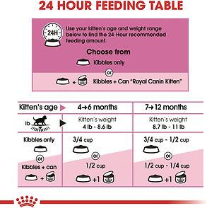 FoodGuide.jpg