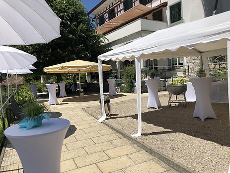 Hochzeit Apero,Hirzelheim Regensberg