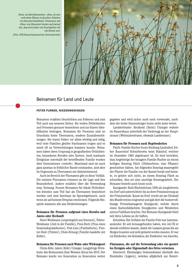 Wehntaler Jahresblatt 2013:04.jpg