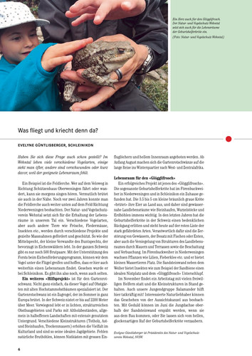 Wehntaler_Jahresblatt_2016:07.jpg