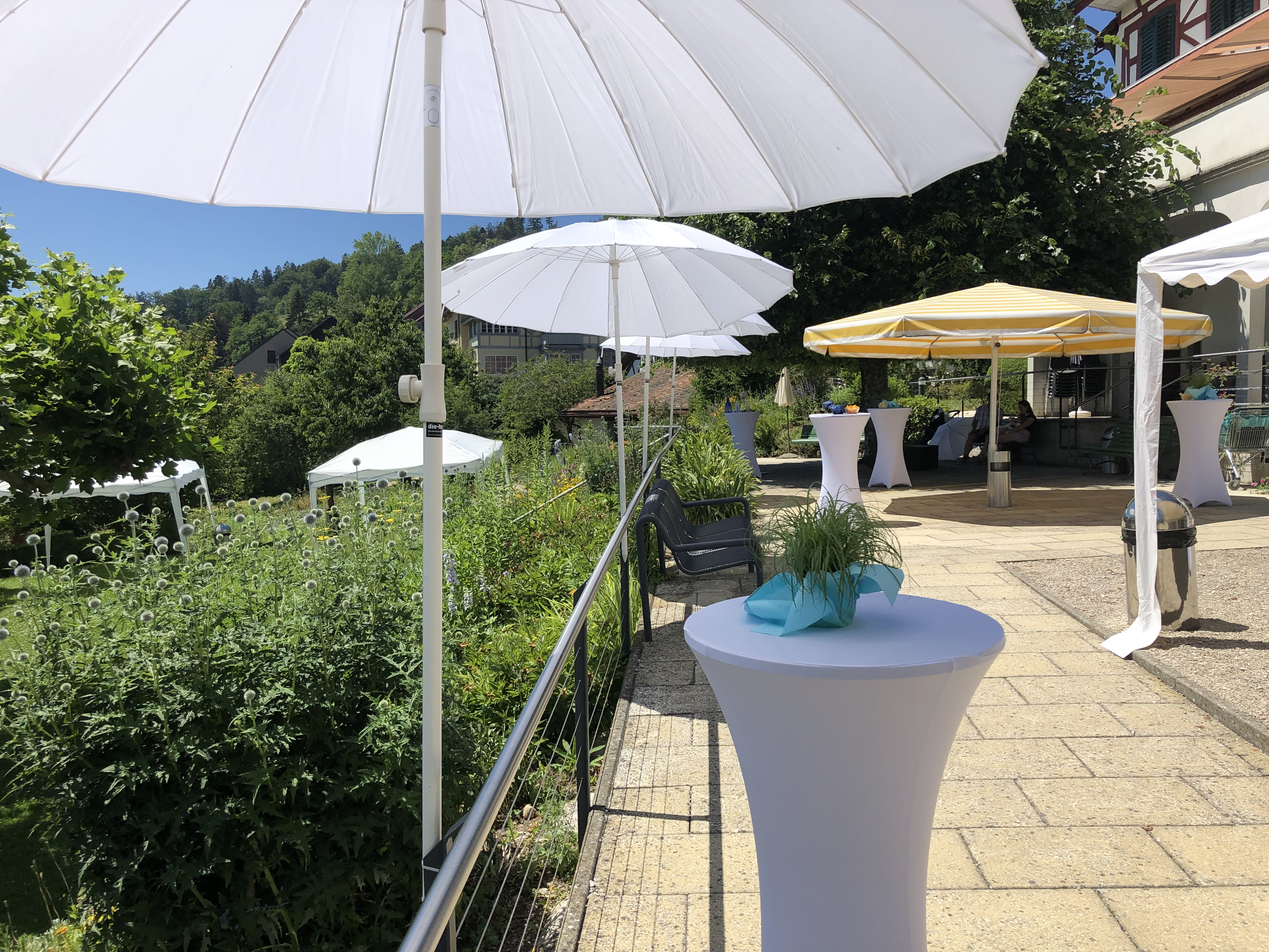 Hochzeitsapéro Hirzelheim Regensberg