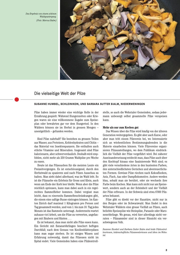 Wehntaler Jahresblatt 2020-4.jpg