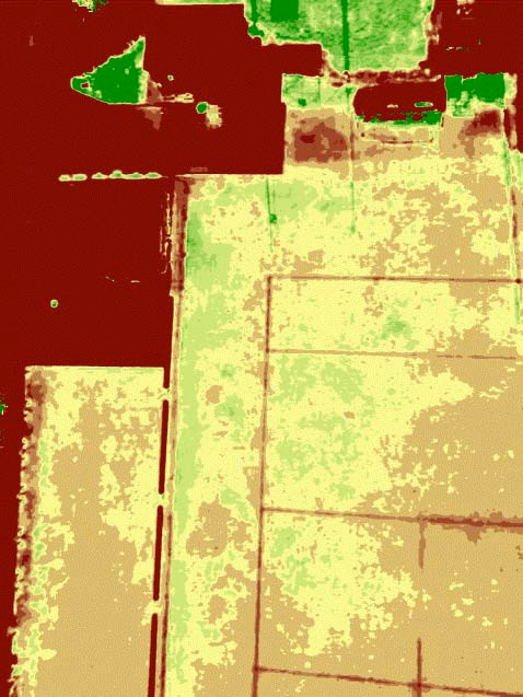 NDVI Drone imagery