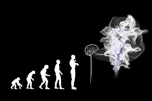 evolution-3885331_1280.jpg