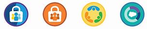 Ikone Salesforce trailhead