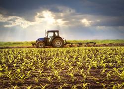 farm-quotes-1580917869