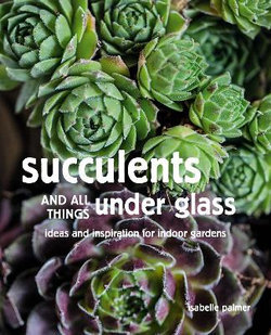 Succulents and all things under glass (By: Isabelle Palmer)