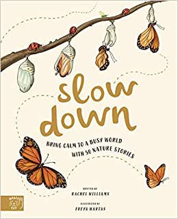 Slow Down (By: Rachel Williams)
