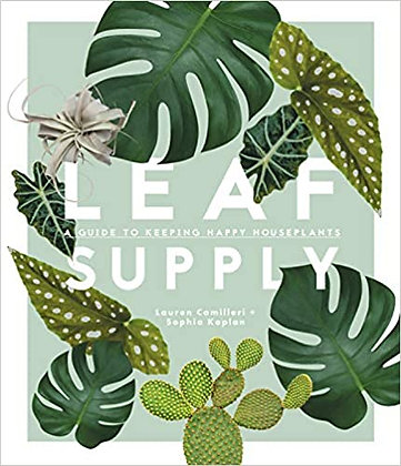 Leaf Supply (By: Lauren Camilleri)