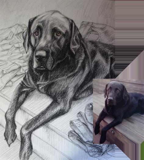 Portrait drawing, Portrettekening