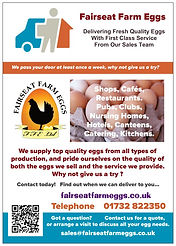 Fairseat Farm Egg Flyer