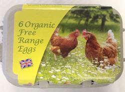 Six free Range Organic Eggs