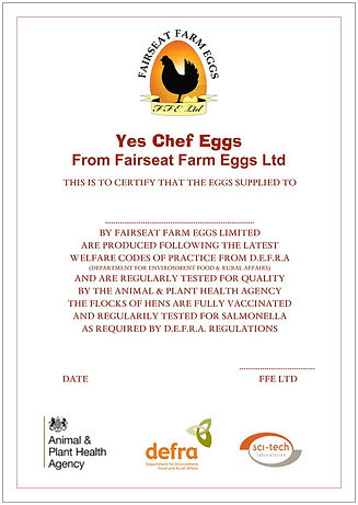 Yes Chef Certificate