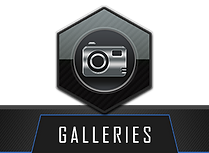 GALLERY PAGE ICON WITH LABEL.png