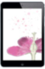 ipad-transparent-frame-with-flower.png