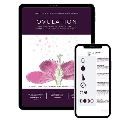 Ovulation Ebook Graphics.png