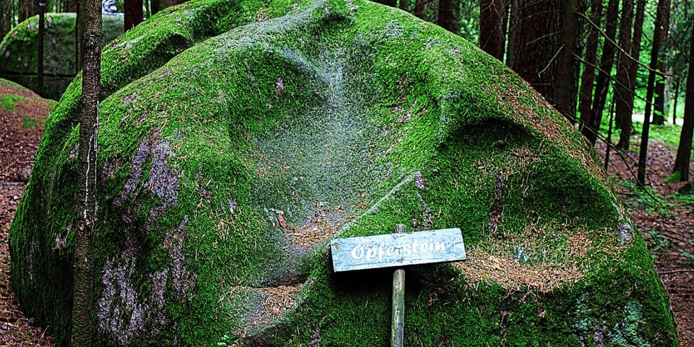 """Biodanza im Wald beim """"Platz des Skorpions"""", ein mystischer Kraftplatz mitten im Wald."""