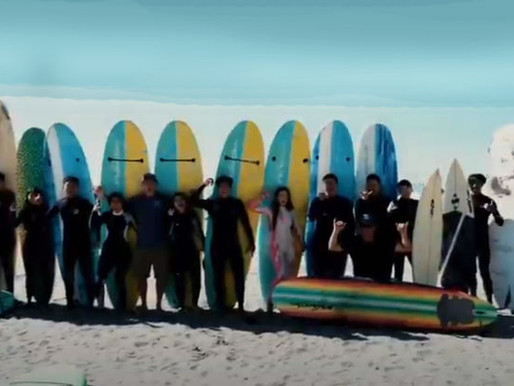 Learning to Surf with CVSC