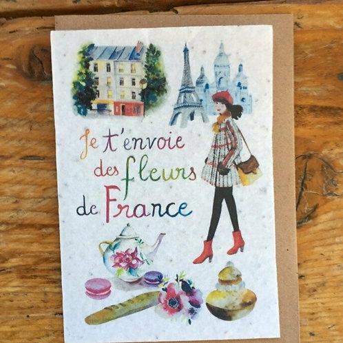 """Carte à planter """"France"""""""