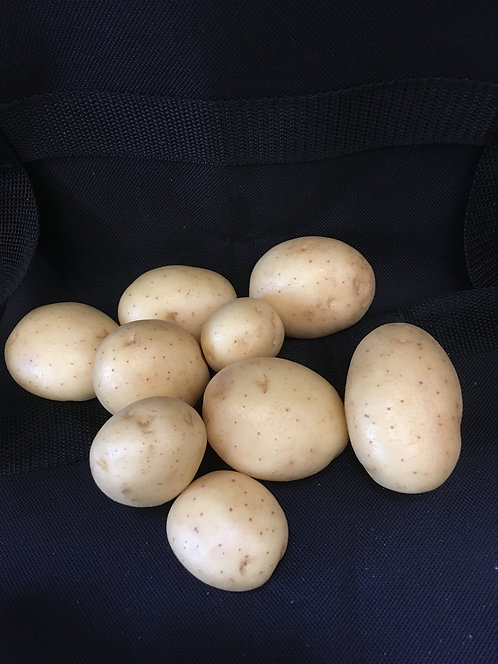 1/2 kg bag New Potatoes