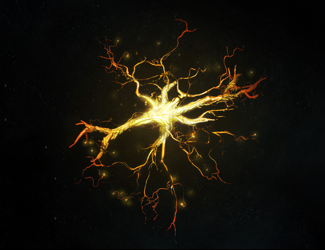 Inter neuron