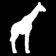 Giraffe - WHT.png