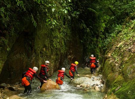 Risk Management Case Study: Mangatepopo Drowning, New Zealand 2008
