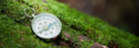 Magnetic compass used for outdoor program on mossy log