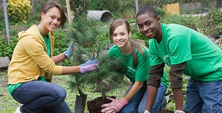 Young people planting tree as part of environmental education curriculum