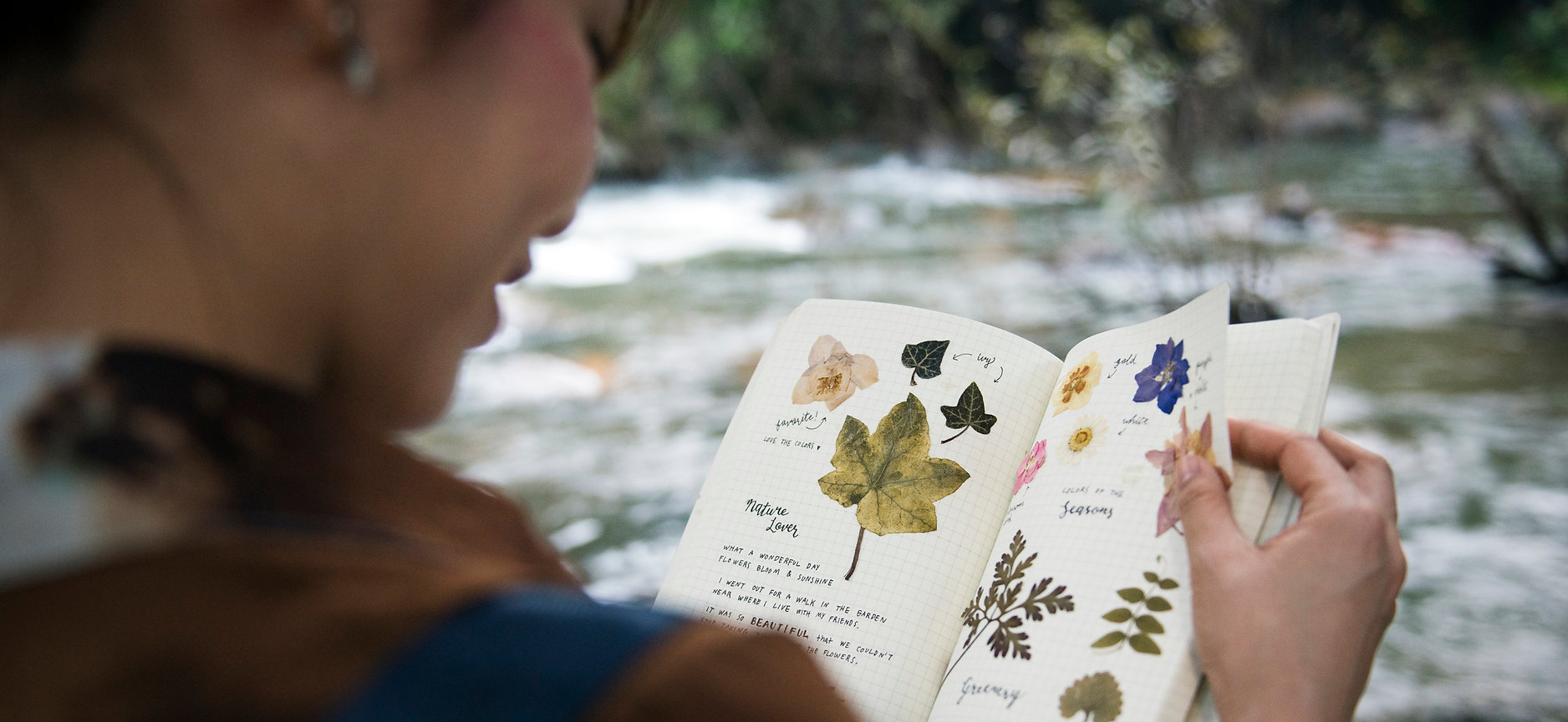 Environmental Education Curriculum Desig