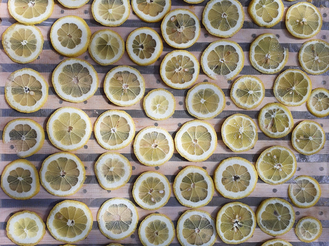 Sušeni limuni