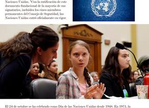 Día internacional de la ONU