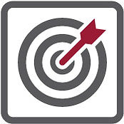 Icon of arrow hitting a bulls eye under the segment title Project Management & Execution