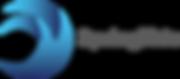 Logo_SpringTide_PNG.png