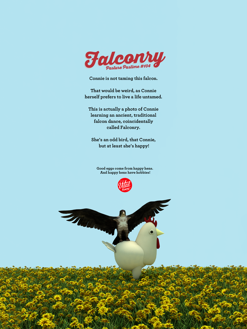falconry_3.png