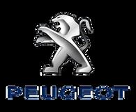 Peugeot a fait confiance à Ramonage Willig.png