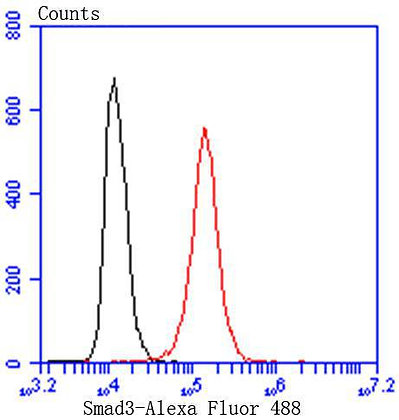 Smad3 Recombinant Rabbit monoclonal Antibody IgG