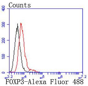 FOXP3 Recombinant Rabbit monoclonal Antibody IgG