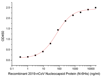 Recombinant SARS-CoV-2 (2019-nCoV) Nucleocapsid Protein (N-His)