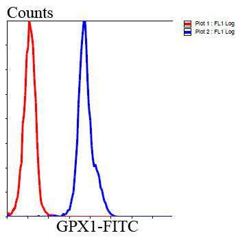 Glutathione Peroxidase 1 Mouse monoclonal Antibody IgG2b