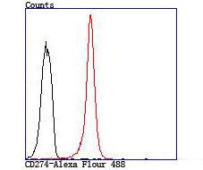CD274 (PD1L1) Rabbit polyclonal Antibody IgG